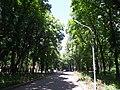 Парк ім. Пушкіна 04.JPG