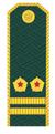 Подполковник таможенной службы РФ.png