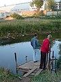 Пруд (A pond) - panoramio.jpg