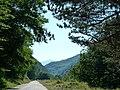 Пътят Ямна-Черни Вит,road from Yamna to Cherni Vit, Golyam Klimash peak - 1355m - panoramio.jpg