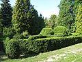 Сирецький дендропарк IMG 2297.jpg