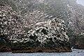 Скалы острова Арий Камень.jpg