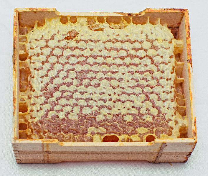 File:Сотовый мёд.jpg