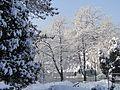Троян - panoramio (36).jpg