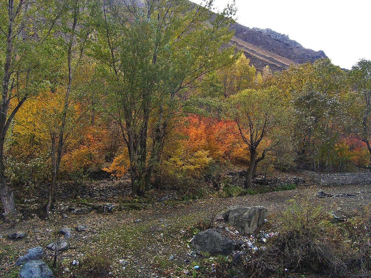 منظره روستا در پاییز