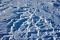 بارش برف در روستای جاسب قم- قله ولیجیا 44.jpg
