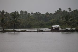 Shrimp farming - The gate of a traditional shrimp farm in Kerala, India which uses the tide to harvest shrimp