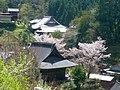 下市町才谷・中地区より 西照寺と多聞院を望む Saishōji and Tamon-in 2011.4.21 - panoramio.jpg