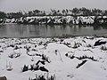 大竹海雪景 - panoramio.jpg