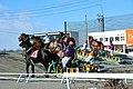 帯広競馬場の第2障害を上がっている風景(2016年1月1日第2競走).JPG