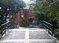 植物園中腊葉館(屋外以及屋內)1924年建造-7.jpg