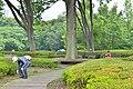 皇居東御苑 二の丸雑木林 (The East Gardens of the Imperial Palace) (8349009436).jpg