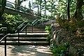 駒沢オリンピック公園 - panoramio (3).jpg