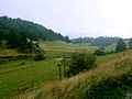 .green fields in Rhodope mountain.jpg