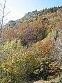 01710 Thoiry, France - panoramio (40).jpg