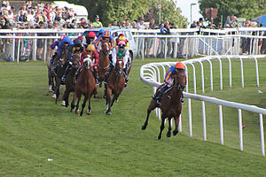 2015 Epsom Derby - The field rounds Tattenham Corner with Hans Holbein leading.