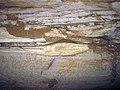 050 Mudmound horizon, upp. Fredonia Mbr. 4 (8320905701).jpg