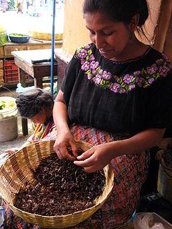 Violence against women in Guatemala - Wikipedia