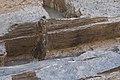 14-11-15-Ausgrabungen-Schweriner-Schlosz-RalfR-069-N3S 4052.jpg