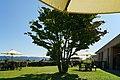 150922 Chihiro Art Museum Azumino Japan04s3.jpg