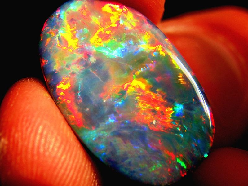File:16.42cts Lightning Ridge black Opal.JPG