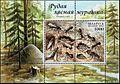 2002. Stamp of Belarus 0457.jpg