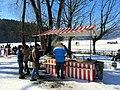 2012 'Seegfrörni' - Türlersee - Hausen am Albis 2012-02-18 12-40-44 (SX230).JPG
