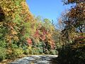 2012 Fall Color in the Chattahoochee National Forest (8113847078).jpg