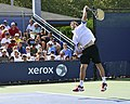 2013 US Open (Tennis) - Albert Ramos (9667979176).jpg