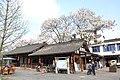 2014-04-04 西来古镇 蒲江 liuzusai - panoramio (22).jpg