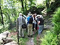 2014 Fort Tryon Park Alpine Garden guide leads tour group.jpg