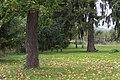 2014 Krosnowice, park przy dworze, 02.JPG