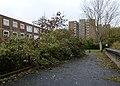 2015-London-Woolwich, Morris Walk Estate 14.jpg