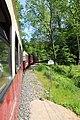 2017-05-25 Bäderbahn Molli 06.jpg