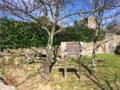 2019.03.02 Cabanas de Viriato (2).png