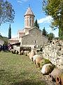 208 Outres à l'arrière du monastère d'Ikalto.JPG