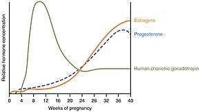 Childbirth - Wikipedia