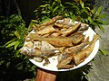 3412Fried fish in the Philippines 30.jpg