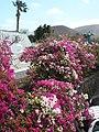 35570 Yaiza, Las Palmas, Spain - panoramio.jpg