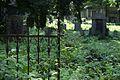 4174viki Cmentarz przy Kościele Pokoju w Świdnicy. Foto Barbara Maliszewska.jpg
