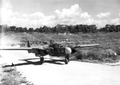 419th Night Fighter Squadron P-61A-1-NO Black Widow - 42-5506.png