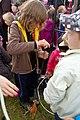 5.8.16 Mirotice Puppet Festival 140 (28715114701).jpg