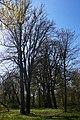 68-215-5006 Шелехівський парк.jpg