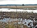 7352 Hoenderloo, Netherlands - panoramio (1).jpg