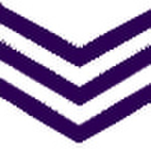 2013 AFL Grand Final - Image: AFL Fremantle Away Icon