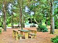 AN Parco Belvedere tavoli.JPG