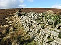 A moorland drystone wall - geograph.org.uk - 680026.jpg
