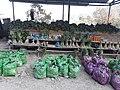 A village market shed in Nagaland.jpg