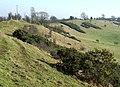 Abbot's Castle Hill, Shropshire - geograph.org.uk - 692983.jpg