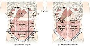 Eclampsia - Wikipedia